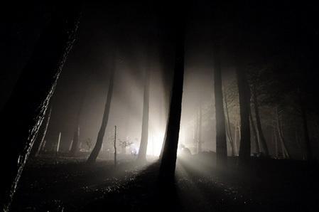 https://treeoflifenaples.files.wordpress.com/2010/08/light-in-darkness.jpg